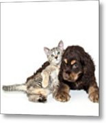 Very Sweet Kitten Lying On Puppy Metal Print