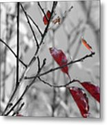 Vestiges Metal Print