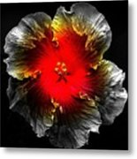 Vibrant Flower Series Metal Print by Jen White