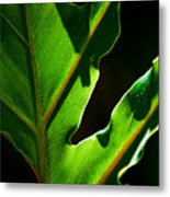 Vibrant Green Metal Print