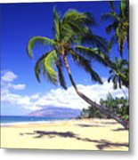 Vibrant Green Palms Metal Print