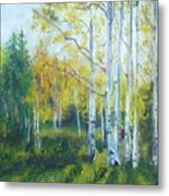 Vibrant Landscape Paintings - Arizona Aspens And Pine Trees - Virgilla Art Metal Print