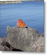 Viceroy Red List Endangered Series Metal Print