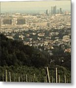 Vienna From The Vineyard Metal Print