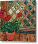 View From A Deck Metal Print
