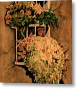 View From A Roman Window Metal Print