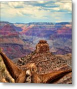 View From Behind The Ears Metal Print