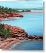 View From Cape Bear Metal Print