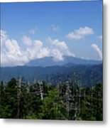 View From Clingman's Dome Metal Print