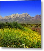 View From Dripping Springs Rd Metal Print
