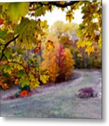 View From Inside Metal Print