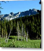 View From Lake Mary Metal Print