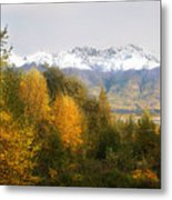 View From My Studio October 2008 Metal Print