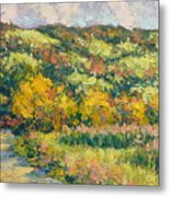 View From Pine Plains Metal Print