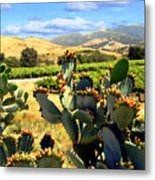 View From Santa Rosa Road Metal Print