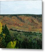 View From Shinning Bank  Metal Print