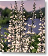 View From The Bridge Of Flowers Metal Print