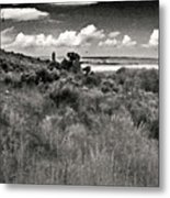 View From The Cabin Window Metal Print