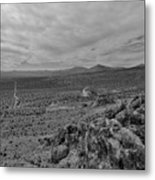 View From The Hide-out Metal Print