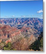 View From The South Rim Metal Print