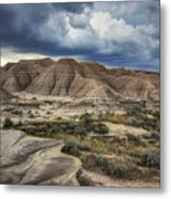 View From The Top - Toadstool  Metal Print