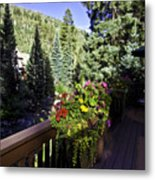 View From Vail House Metal Print