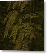View In A Forest  Outer Right Wing Of A Triptych  Gerard David  C  1505   C  1515 Metal Print