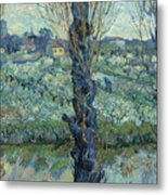 View Of Arles, Flowering Orchards Metal Print