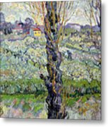View Of Arles Metal Print