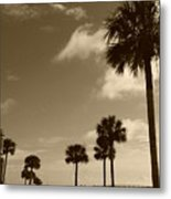 View Of Castillo De San Marcos Metal Print