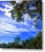 View Of Countryside In Frederick Maryland In Summer Metal Print