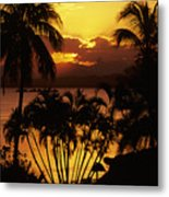 View Of Fiji Metal Print
