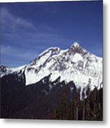 View Of Garibaldi Mountain Metal Print