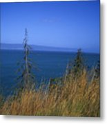 View Of Kachemak Bay, Alaska Metal Print