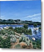 View Of Lake Hemet Metal Print