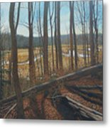 View Of Parkers Creek Metal Print