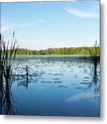 View Of The Lake Enajarvi Metal Print