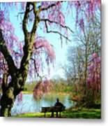 View Of The Lake In Spring Metal Print