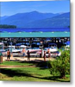 View Of The Selkirk Mountains Metal Print