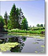 Village Pond At Tissington Metal Print