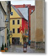 Village Red Vines Metal Print