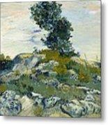 Vincent Van Gogh, The Rocks Metal Print