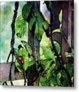 Vine And Trellis Digital Watercolor 4472 W_2 Metal Print