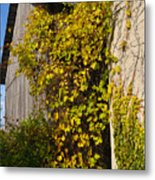 Vined Silo Metal Print