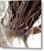 Vines 006 Metal Print