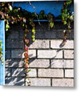 Vines On Blue Metal Print