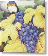 Vineyard Blue Metal Print