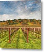 Vineyard Convergence Metal Print
