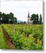 Vineyard In France Metal Print