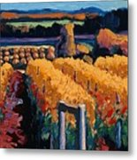 Vineyard Light Metal Print by Christopher Mize